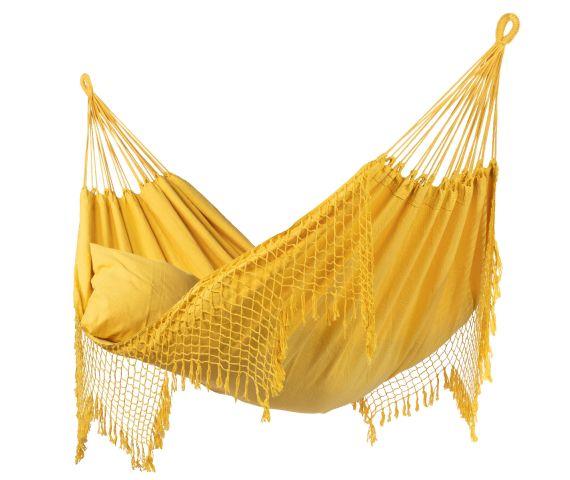 AmacaFamiglia 'Fine' Yellow
